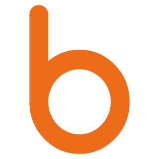 brandness logo